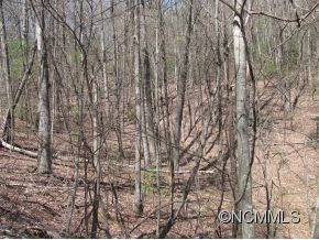 Tiny photo for 2400 Big Branch Road, Brevard, NC 28712 (MLS # NCM537432)