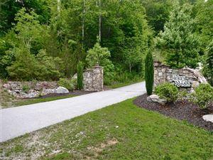 Photo of 000 Chimney Rock Road, Hendersonville, NC 28792 (MLS # 3289446)