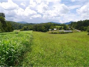 Photo of 1921 Silvers Welch Road, Old Fort, NC 28762 (MLS # 3300462)