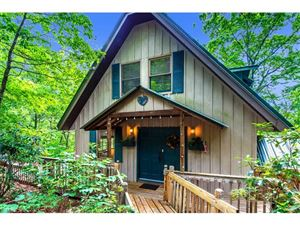Photo of 121 Franks Cove Road, Brevard, NC 28712 (MLS # 3286473)