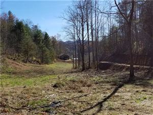 Photo of 9999 Jordan Branch, Mars Hill, NC 28754 (MLS # 3340517)