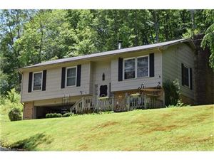 Photo of 31 Trout Haven Lane, Balsam Grove, NC 28708 (MLS # 3295539)
