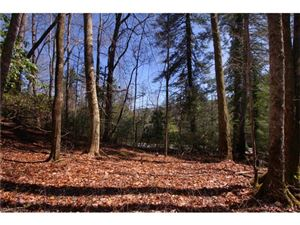 Photo of Lot 61 Deerlake Road #61, Brevard, NC 28712 (MLS # 3162541)