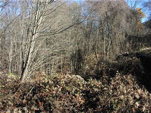 Photo of Lot 204-A Apple Creek Road #204-A, Waynesville, NC 28786 (MLS # 3340555)