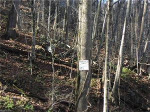 Photo of Lot 43 Venezia Way #43, Waynesville, NC 28786 (MLS # 3340566)