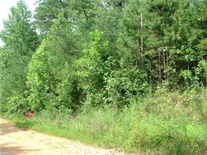 Photo of 00 Horse Creek Road, Mill Spring, NC 28756 (MLS # 3300575)