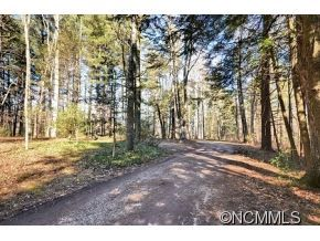 Photo of 150 Cane Creek Road, Fletcher, NC 28732 (MLS # NCM567583)