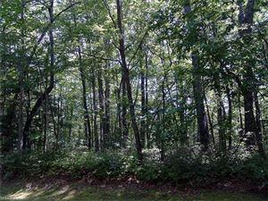Photo of 0 Cherokee Circle, Lake Toxaway, NC 28747 (MLS # 3304584)