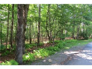 Photo of Lot 1 Sassafras Road, Cedar Mountain, NC 28718 (MLS # 3290588)