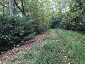 Photo of TBD Dundee Lane #5, Pisgah Forest, NC 28768 (MLS # 3329588)