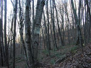 Photo of Lot 226 Tannehill Lane #Lot 226, Waynesville, NC 28786 (MLS # 3340588)