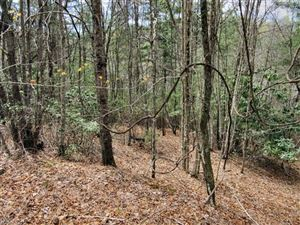 Photo of L #20 Still Branch Road, Brevard, NC 28712 (MLS # 3308589)