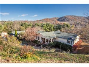 Photo of 10 Derry Drive, Horse Shoe, NC 28742 (MLS # 3339589)