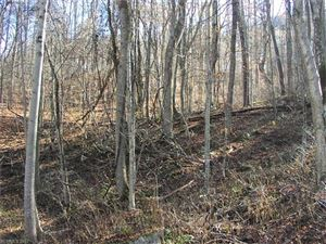 Photo of Lot 309 Burnt Fork Trail #309, Waynesville, NC 28786 (MLS # 3340590)