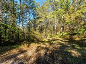 Photo of 40 Clearview Lane, Weaverville, NC 28787 (MLS # 3339598)