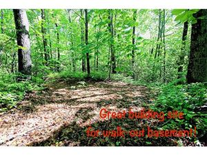 Photo of 82 Laurel Thicket None #L82, Brevard, NC 28712 (MLS # 3179624)