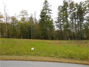 Photo of 70 Crystal Mountain Drive #13, Hendersonville, NC 28739 (MLS # 3329657)