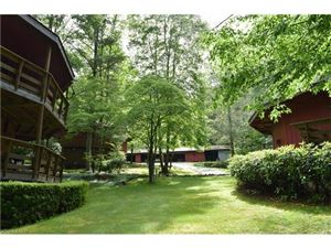 Photo of 64 White Birch Lane, Balsam Grove, NC 28708 (MLS # 3288668)