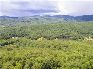 Photo of 48 Stonefly Drive, Mills River, NC 28759 (MLS # 3293687)