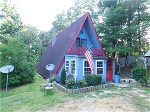 Photo of 169 Shelter Cove Lane, Zirconia, NC 28790 (MLS # 3305701)