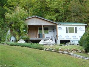 Photo of 7177 Hwy 212 Highway, Marshall, NC 28753 (MLS # 3326717)