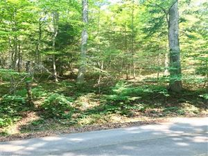 Photo of 2 Country Spring Drive, Asheville, NC 28804 (MLS # 3304763)
