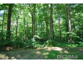 Photo of 25 Poplar Crest Drive, Pisgah Forest, NC 28768 (MLS # NCM587771)