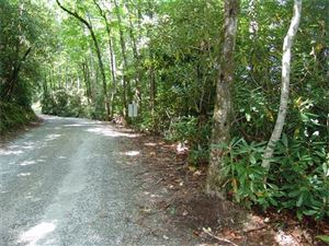 Photo of TBD Little Elbow Mountain Road, Lake Toxaway, NC 28747 (MLS # 3318775)