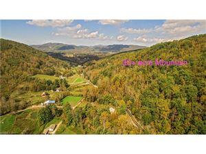 Photo of 00000 Terrys Gap Road, Fletcher, NC 28732 (MLS # 3328784)