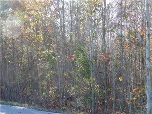 Photo of 0 Dimsdale Drive #28, Rutherfordton, NC 28139 (MLS # 3338787)