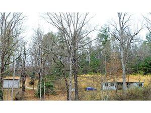 Photo of 118 Elk Dell Lane, Zirconia, NC 28790 (MLS # 3254795)