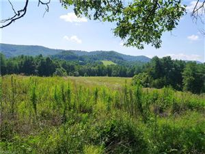 Photo of TBD 90+/- Acres Union Hill Church Road, Hendersonville, NC 28792 (MLS # 3336801)