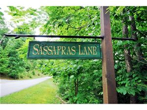 Photo of 16/17 Sassafrass Lane #16/17, Pisgah Forest, NC 28768 (MLS # 3153811)