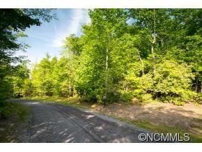Photo of Lot 269 Walnut Ridge Road, Brevard, NC 28712 (MLS # NCM585839)