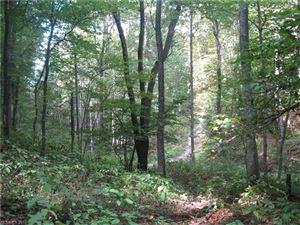 Photo of 0000 Tessie Lane #20, Black Mountain, NC 28711 (MLS # 3322840)
