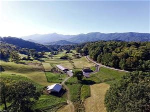 Photo of 594 Greenview Drive, Waynesville, NC 28786 (MLS # 3323866)
