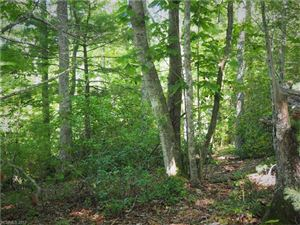 Photo of 0000 Lot 85 Firefly Trail, Marshall, NC 28753 (MLS # 3292875)