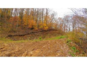 Photo of 00000 US 23 Highway, Mars Hill, NC 28754 (MLS # 3339888)