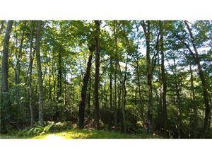 Photo of 000 Kings Creek Road, Brevard, NC 28712 (MLS # 3305891)
