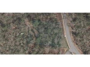 Photo of tbd Springhouse Trail, Brevard, NC 28712 (MLS # 3320899)