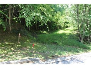 Photo of TBD Deerlake Road #Lot 62, Brevard, NC 28712 (MLS # 3328931)
