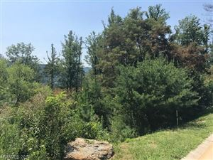 Photo of TBD Camsyn Drive #43, Weaverville, NC 28787 (MLS # 3310943)