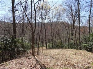 Photo of 0 Chestnut Oak Lane, Pisgah Forest, NC 28768 (MLS # 3164979)