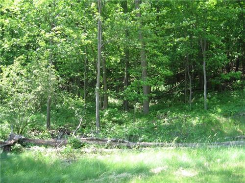 Photo of 438 Elm Ct, TWIN LAKES, WI 53181 (MLS # 1539092)