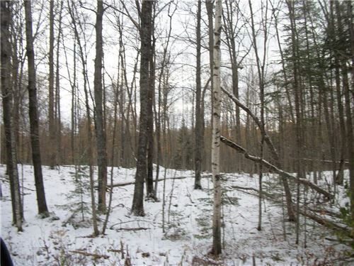 Photo of 1510 2ND St, DELAFIELD, WI 53018 (MLS # 1548392)