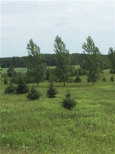 Photo of 332 Appletree Ln, EAGLE, WI 53119 (MLS # 1545433)