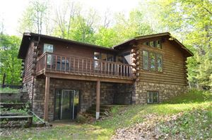 Photo of 430 Upper Horseshoe Dr, TWIN LAKES, WI 53181 (MLS # 1531515)