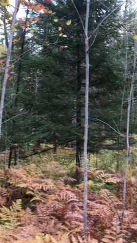 Photo of W304N2941 HAWKSNEST CT, PEWAUKEE, WI 53072 (MLS # 1550560)