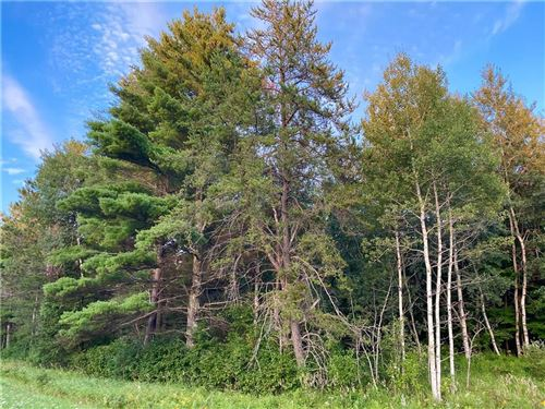 Photo of 241 N Newcomb, WHITEWATER, WI 53190 (MLS # 1545895)