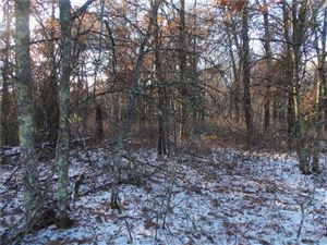 Photo of W328N3650 Range Woods DR, NASHOTAH, WI 53058 (MLS # 1526957)